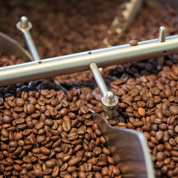 Coffee beans being roasted in a large roaster