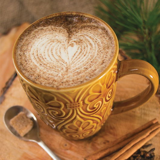 a glass of Toasty spiced coffee served in a ceramic mug and topped with steamed milk in a decorative heart shape pattern and topped with spices for additional flavor